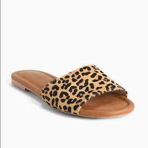 Torrid Leopard Calf Hair Slide Sandals NWOT 11W